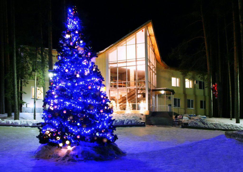 Новый год на базе отдыха 2017 омск